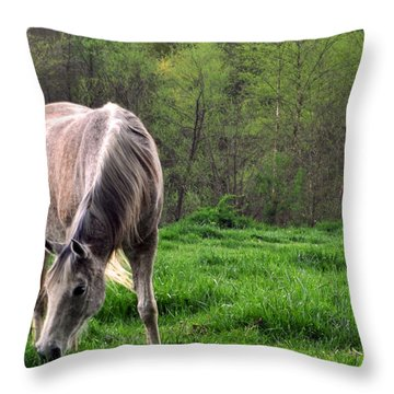 Throw Pillow featuring the photograph Peaceful Pasture by Lydia Holly