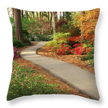 Peaceful Path Throw Pillow