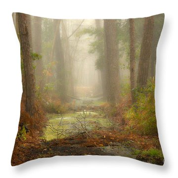 Peaceful Pathway Throw Pillow