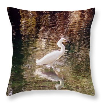 Throw Pillow featuring the photograph Peaceful Waters by Lydia Holly