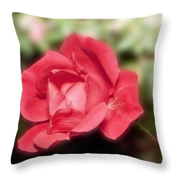 Throw Pillow featuring the photograph Peacefull Passion by Michael Waters