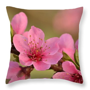 Peach Beautiful Throw Pillow