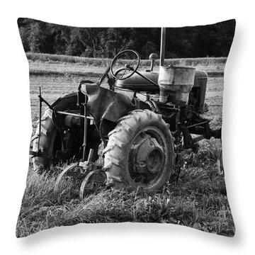 Throw Pillow featuring the photograph Peach Glen Pennsylvania 2 by Tony Cooper