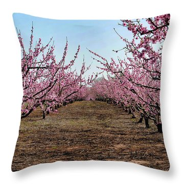 Peaches To Be Throw Pillow by Skip Willits