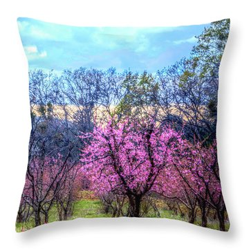 Peachy Blossum Scene2 Throw Pillow by William Havle