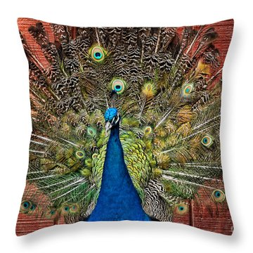 Peacock Tails Throw Pillow by Paul Ward