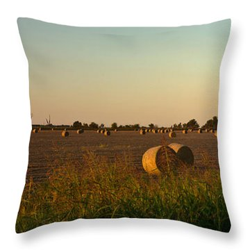 Peanut Field Bales At Dawn 1 Throw Pillow by Douglas Barnett