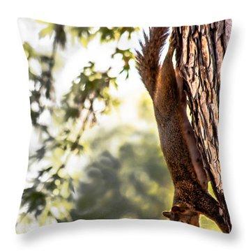Peanut Run Throw Pillow by Robert Bales