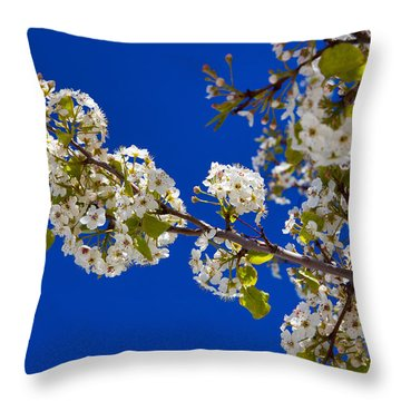 Pear Spring Throw Pillow by Chad Dutson