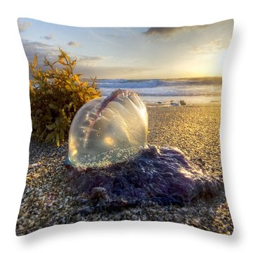 Pearl Of The Sea Throw Pillow by Debra and Dave Vanderlaan