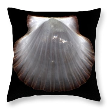 Pearlescent Shell  Throw Pillow