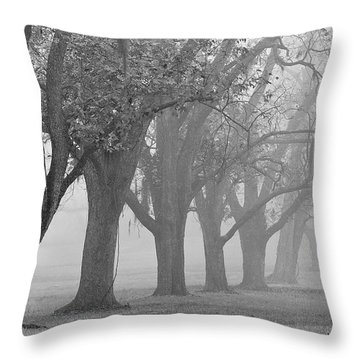 Pecan Grove Throw Pillow by Dan Wells