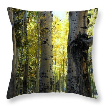 Throw Pillow featuring the photograph Peek A Boo by Fred Wilson