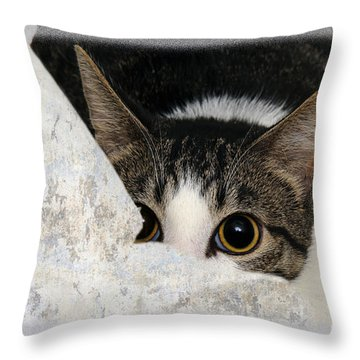 Peek A Boo I See You Too Throw Pillow by Andee Design