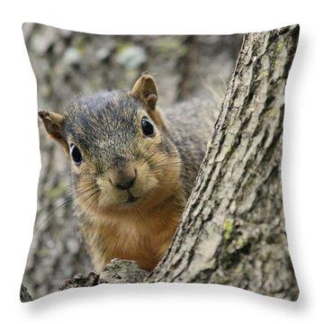 Peek A Boo Squirrel Throw Pillow by Rosanne Jordan