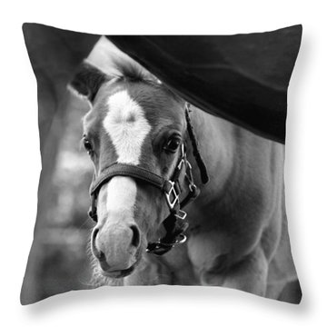 Peek'a Boo - Black And White Throw Pillow