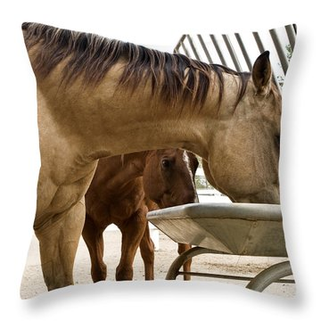 Throw Pillow featuring the photograph Peeking Pony by Lorraine Devon Wilke