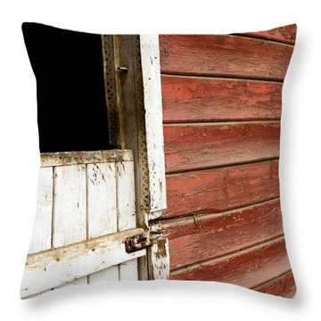 Throw Pillow featuring the photograph Peeling Paint by Lorraine Devon Wilke