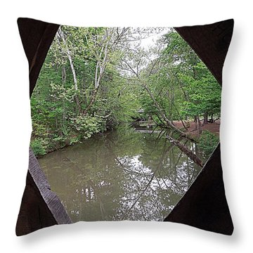 Throw Pillow featuring the photograph Peering Out by Renee Trenholm
