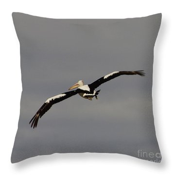 Throw Pillow featuring the photograph Pelican In Flight 2 by Blair Stuart