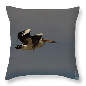 Throw Pillow featuring the photograph Pelican In Flight 3 by Blair Stuart