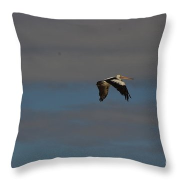 Throw Pillow featuring the photograph Pelican In Flight 4 by Blair Stuart
