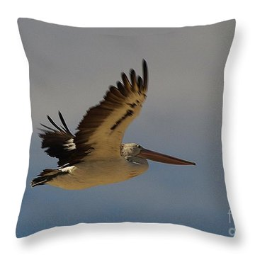 Throw Pillow featuring the photograph Pelican In Flight 5 by Blair Stuart