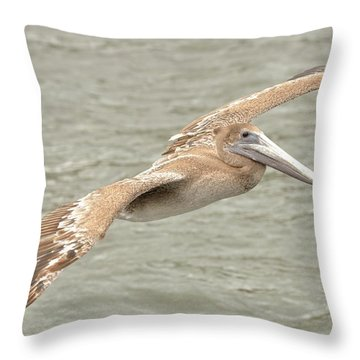 Pelican On The Water Throw Pillow by Rick Frost