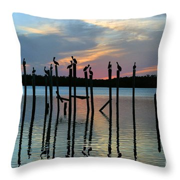 Throw Pillow featuring the photograph Pelican Resting End Of Day by Dan Friend