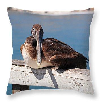 Pelican Taking A Break Throw Pillow