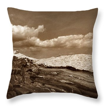 Pemaquid Point Lighthouse Throw Pillow by Skip Willits