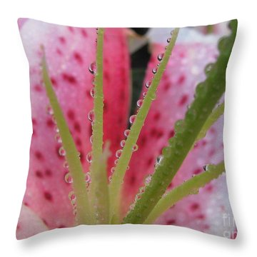 Throw Pillow featuring the photograph Pensive by Tina Marie