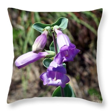 Penstemon Throw Pillow by Dorrene BrownButterfield