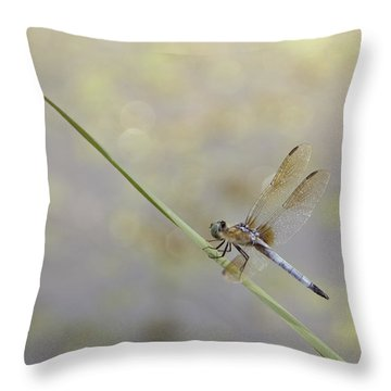Throw Pillow featuring the photograph Perched Dragon In Sepia by JD Grimes
