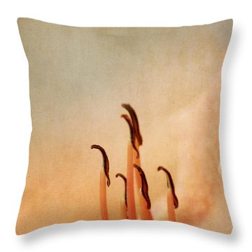 Perfect Throw Pillow by Darren Fisher