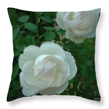 Throw Pillow featuring the photograph Perfect Pair by Mark Robbins