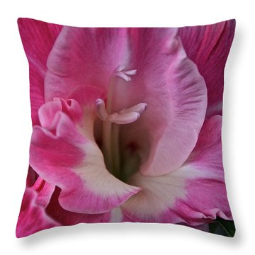 Perfectly Pink Throw Pillow by Susan Herber