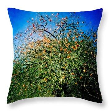 Persimmon Tree Throw Pillow