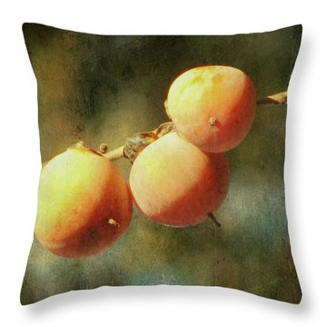 Persimmons Throw Pillow by Amy Tyler