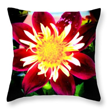 Throw Pillow featuring the photograph Personally Dahlia by Lisa Brandel