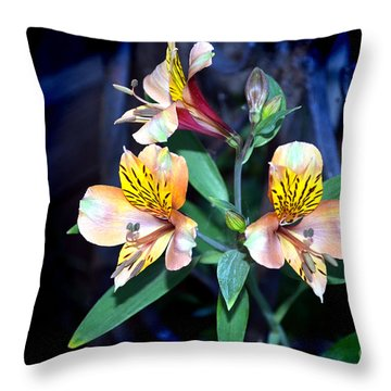 Peruvian Lily In My Garden Throw Pillow