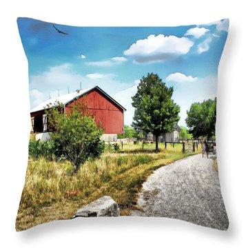 Peter Stuckey Farm Throw Pillow by Tom Schmidt