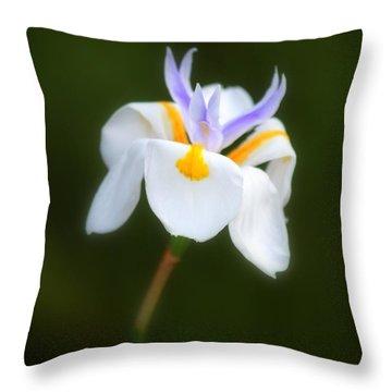 Petite Flower Throw Pillow by Patrick Witz