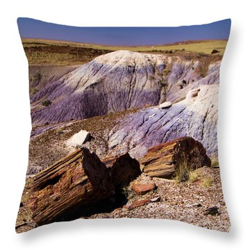 Petrified Logs In The Badlands Throw Pillow