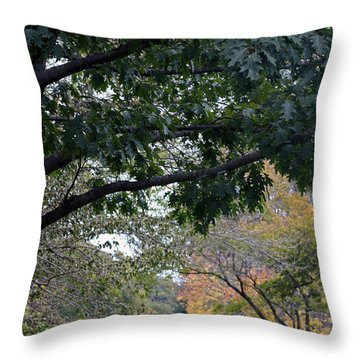 Petrifying Springs Golf Course Throw Pillow by Kay Novy