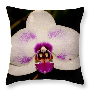Throw Pillow featuring the photograph Phalaenopsis White Orchid by Tikvah's Hope