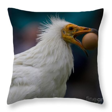 Pharaos Chicken  Throw Pillow by Heiko Koehrer-Wagner