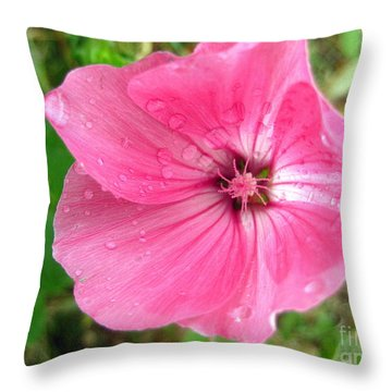 Throw Pillow featuring the photograph Rain Floral by Kathy Bassett