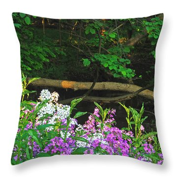 Phlox Along The Creek 7185 Throw Pillow by Michael Peychich