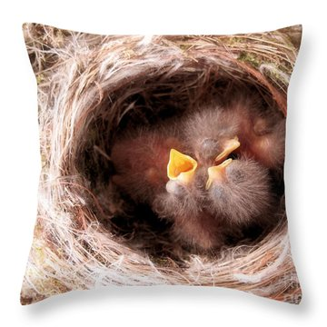 Phoebe Babies In Nest Throw Pillow by Angie Rea